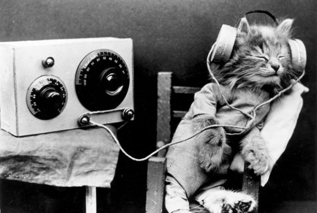 Muzica vs. linistea